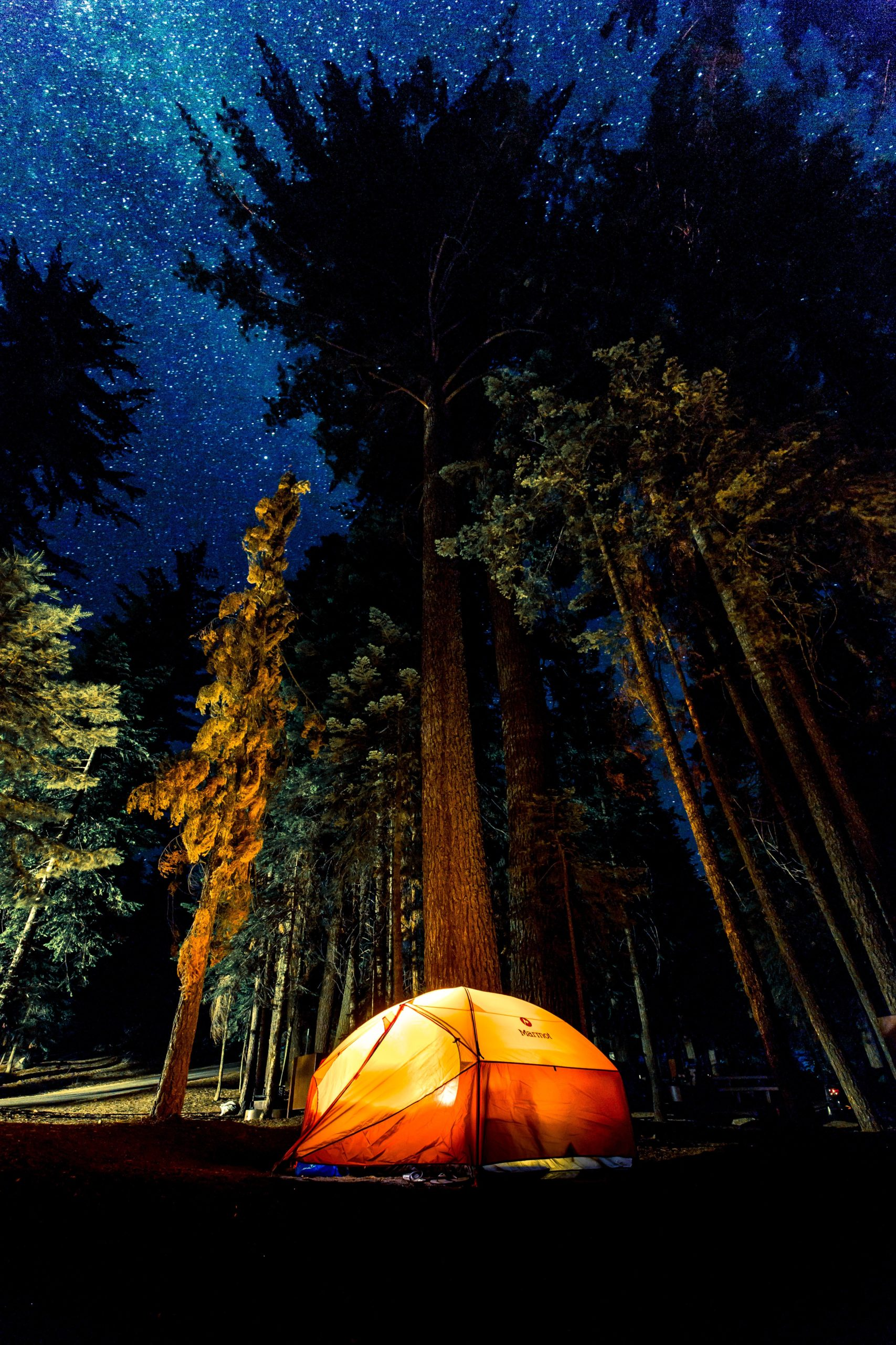 What is Free Standing in SUV Tents?